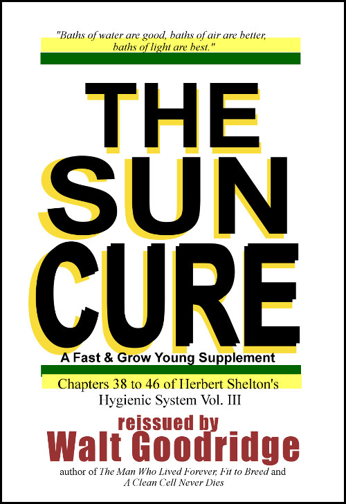 Sun Cure cover